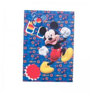 Vocabular Mickey