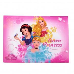 Coperta caiet biologie Princess